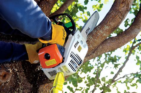 STIHL MS 192 T gasoline chainsaw (video review)