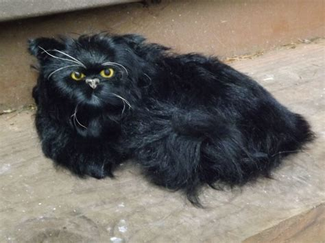 Faux Persian Cat Life Like Prop - Realistic Fake Cat with