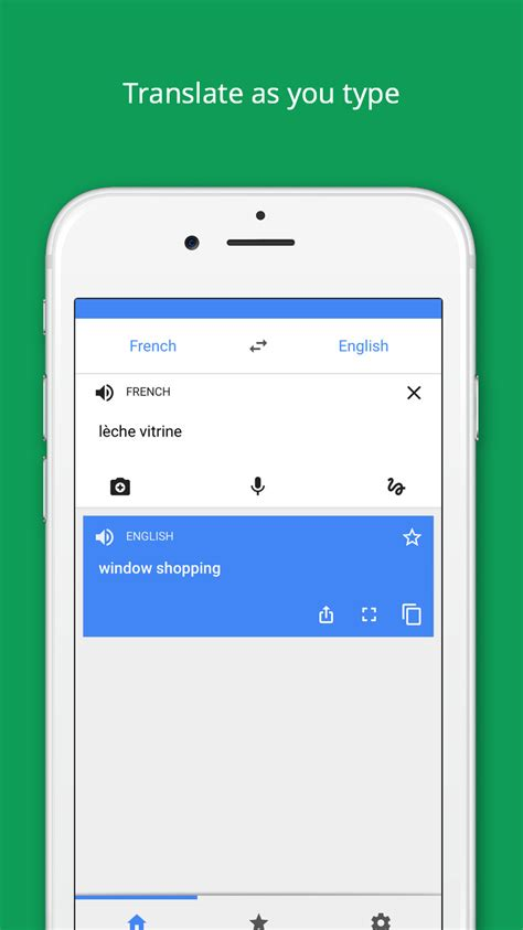 Google Translate App Now Supports Instant Camera